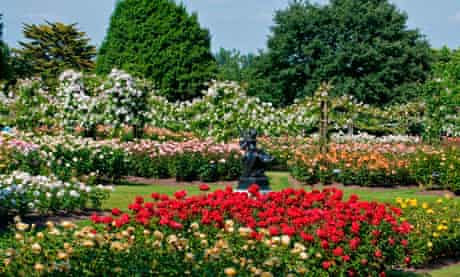 London. Regents Park, Queen Mary's Gardens