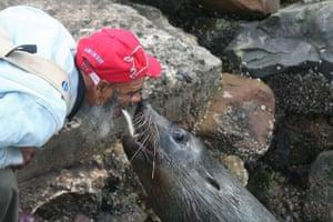 Man feeding a seal