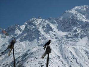 Great Himalayan Trail: Langtang National Park
