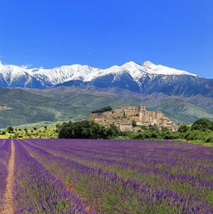 Biking holidays: Bike tour of Provence
