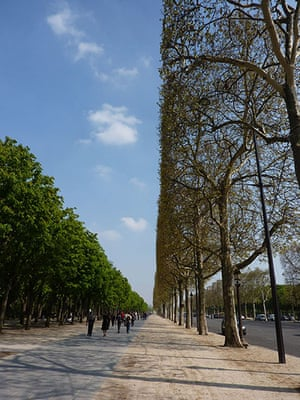 Been there: green: Green: Champs Elysee, Paris