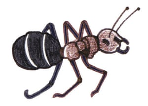 Spotters guide bugs: Wood ant