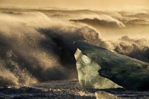 Chasing Ice: Chasing Ice