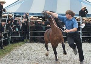 TPOYA: Lancaster County main horse event – Chase Guttman