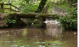 Clapper bridge over Cardinham Water, Cardinham Woods, near Bodmin, Cornwall