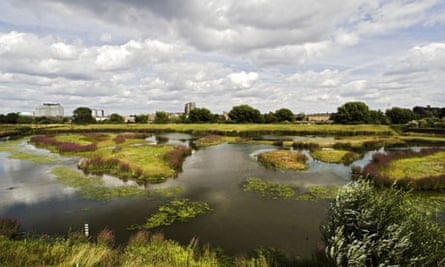 The London Wetlands Centre a Wildlife Reserve