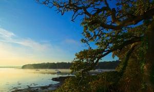 River Cleddau Lawrenny Pembrokeshire