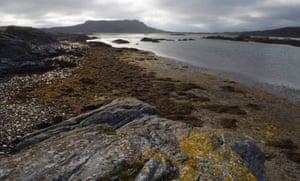 Oronsay Island, Ullinish