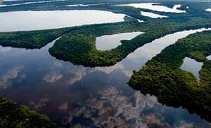 Aerial view from Anavilhanas around Manaus.