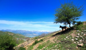 Chorvak reservoir and the mountains of Tian-Shan (province of Tashkent), Uzbekistan