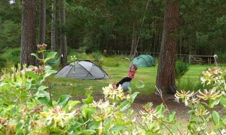 Lazy Duck campsite