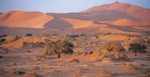 The Namibian desert