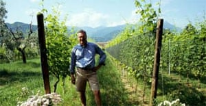 Italy: Vines, wines and a bed in a castello | Travel | The Guardian