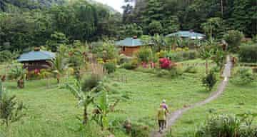 Three Rivers Eco Lodge, Domenica