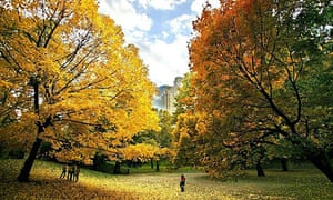 People enjoy a beautiful fall day in New York's Central Park as the trees turn a brilliant autumn color