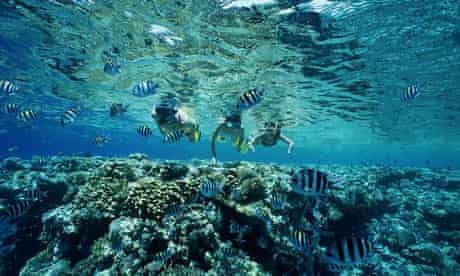 Snorkelling in the Red Sea, Egypt