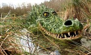 Bewilderwood crocodile