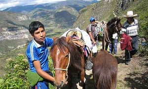 """""""Horses in the Andes, Peru"""""""
