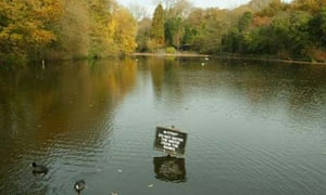 Where I'd rather be: Hampstead ponds