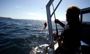 Bruny Island, Australia: fishing