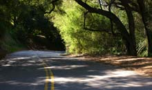 Topanga Canyon, LA: road