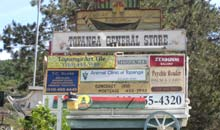 Topanga Canyon, LA: signs