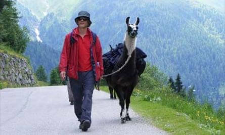 Tim Moore on a lama trek in Tyrol, Austria