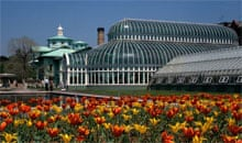 Steinhardt Conservatory at Brooklyn Botanical Garden