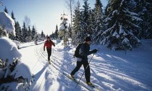 Cross-country skiing, Orebro County, Sweden