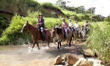 Horse-riding in Bulgaria