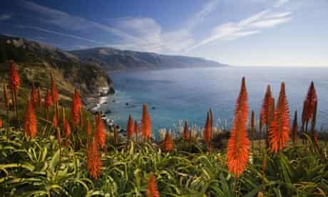 Big Sur's coastline