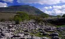 Limestone Pavement in Yorkshire Dales