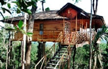 Treehouse, Tranquil homestay