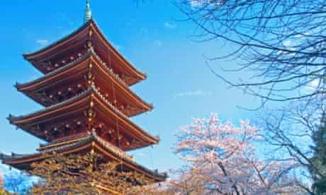 Spring cherry blossom in Ueno Park, Tokyo.