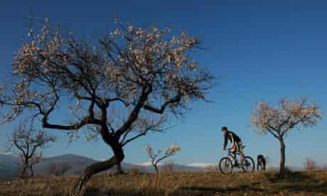 Pure Mountains, Andalucía