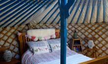 Teapot Lane Luxury Camp, Ireland
