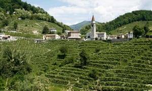 Italy's prosecco sparkling wine region