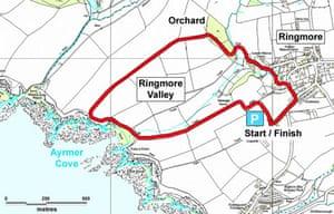 A walk in Ringmore, Devon