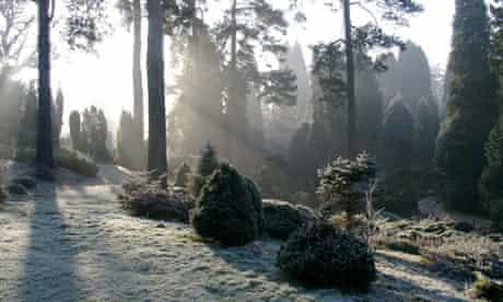 Bedgebury National Pinetum