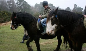 Young boy horse riding in Ashdown forest