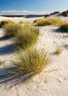 The desert Leba - Poland