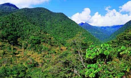 Manu Cloud Forest, Peru
