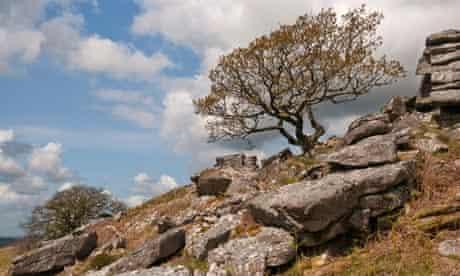Dewerstone, Dartmoor, Devon