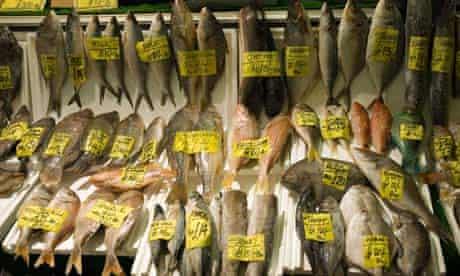 Fish display at Billingsgate fish market, London