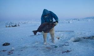 Halibut fishing. Photograph: David Trood