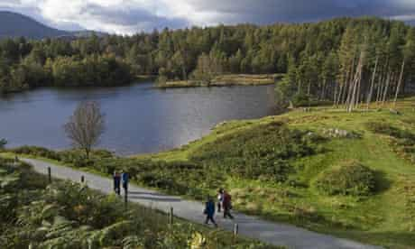 Tarn Hows, Coniston, Lake District