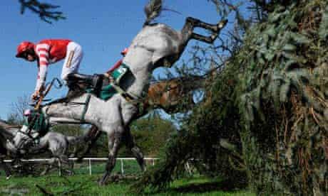 A rider tumbles at Aintree