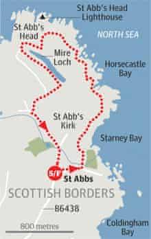 St Abb's Head, Scottish Borders walk graphic