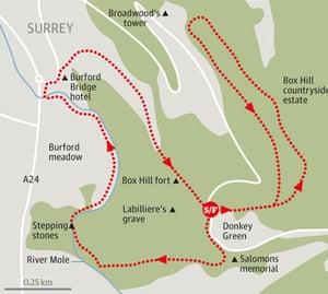 Box Hill Map Box Hill | Great British walks | Travel | The Guardian