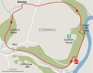 Cotohele estate cornwall walk graphic
